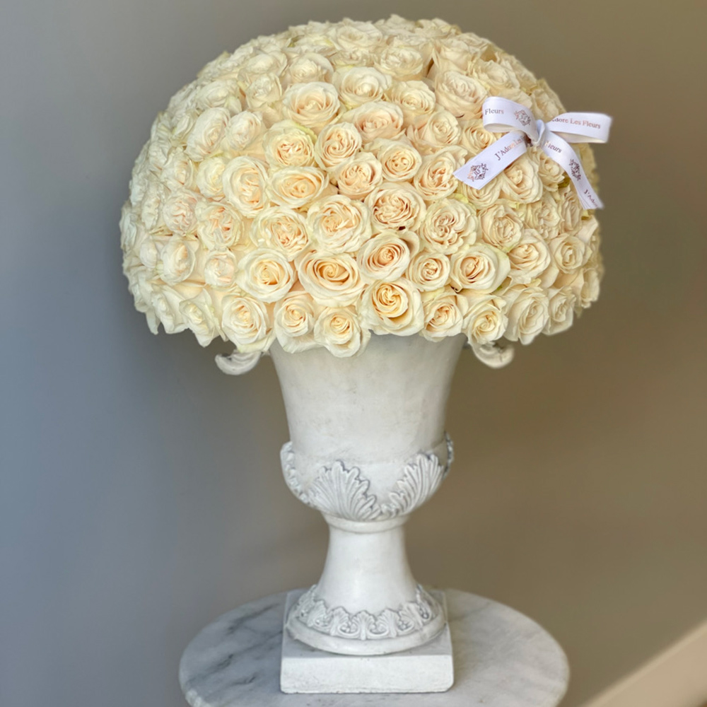 200 JLF Signature Dome Shape White Roses in an Urn