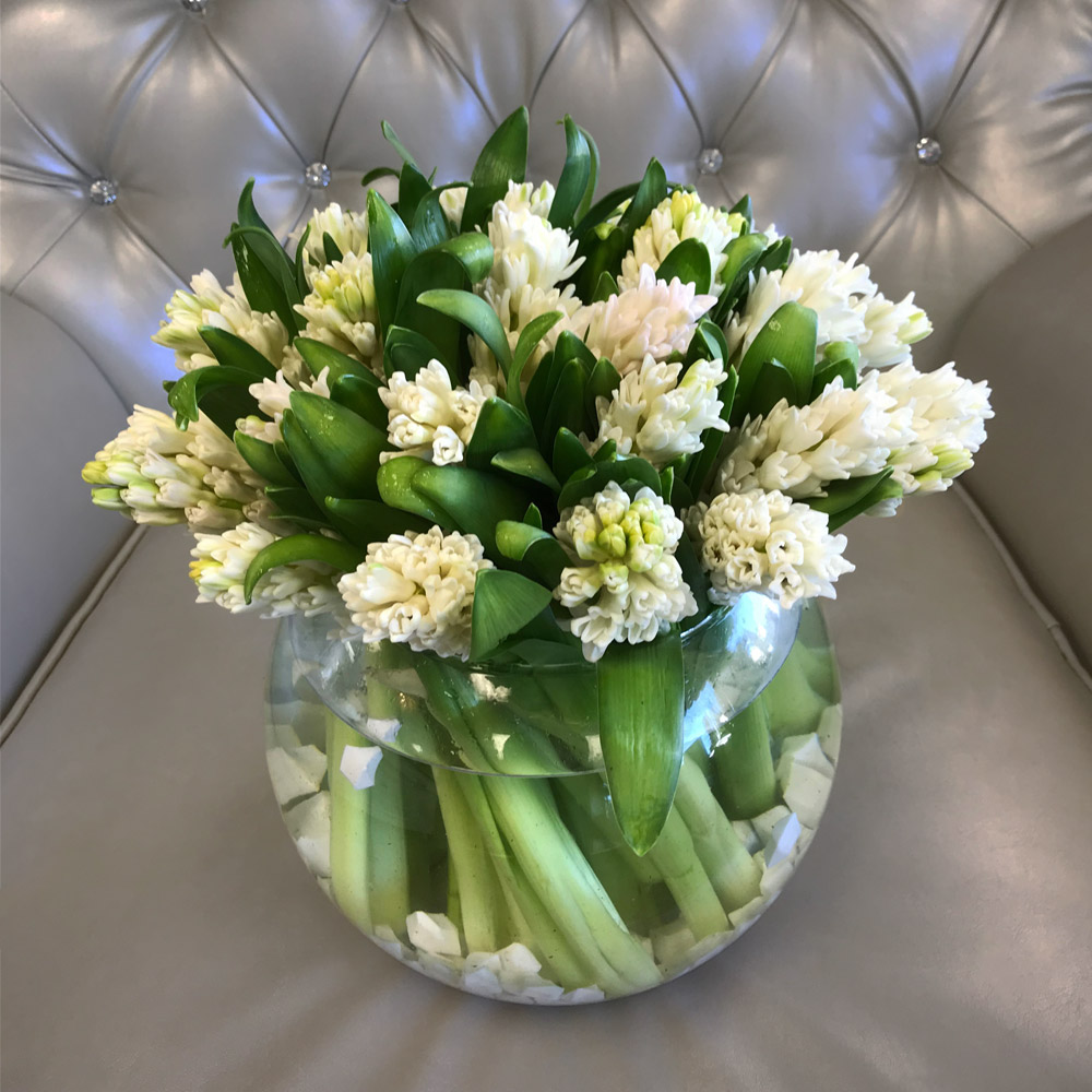 Sweet Hyacinth in a Glass Vase