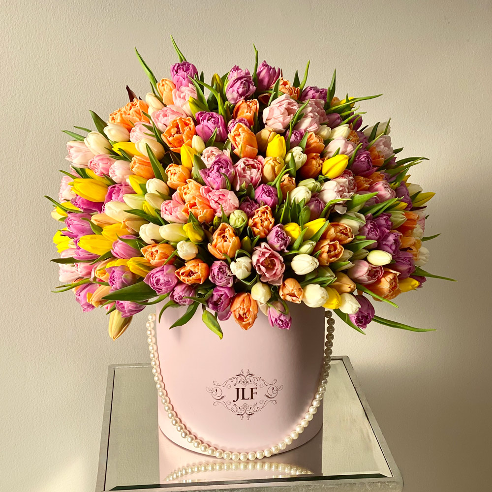 200 Tulips for Spring